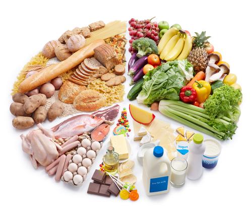栄養素の摂取