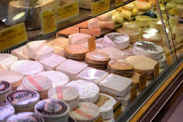 チーズは栄養源