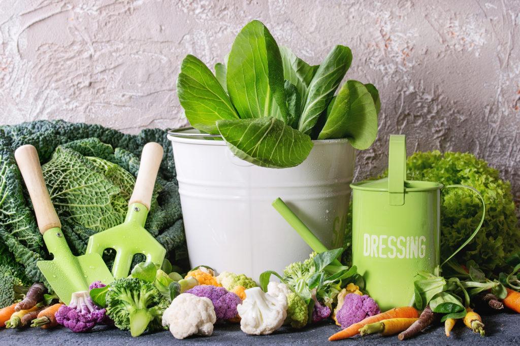 緑黄食野菜