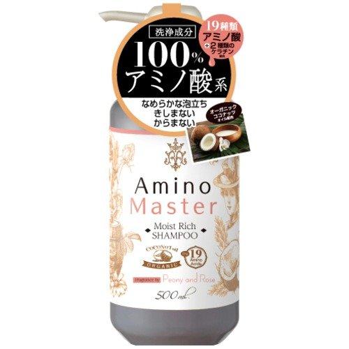 Amino master モイストリッチ シャンプー