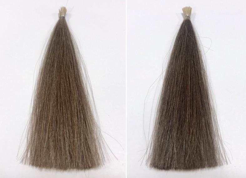 「濡れた髪」と「乾いた髪」